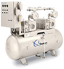 QVMS vacuum pump