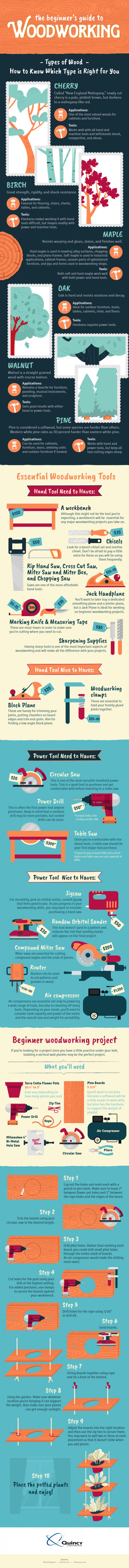 Beginner's Guide to Woodworking Infographic